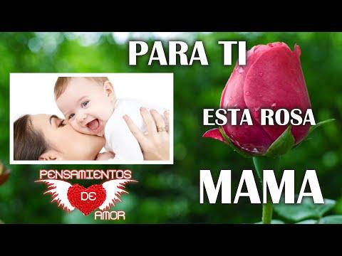 Para ti Esta rosa Mama, Feliz dia Mama, Dedicatorias para las madres, Palabras lindas para Mama