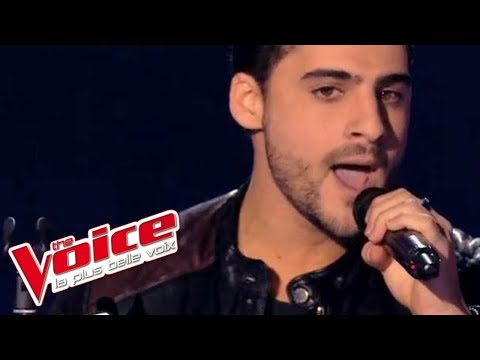 The Script – The Man Who Can't Be Moved | Jérémy Ichou | The Voice France 2014 | Blind Audition