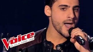 Download Lagu The Script – The Man Who Can't Be Moved | Jérémy Ichou | The Voice France 2014 | Blind Audition Mp3