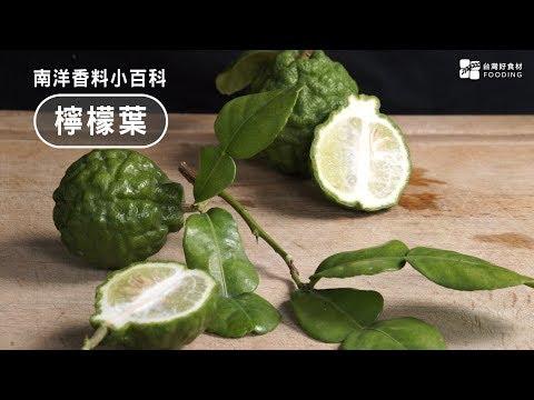 【南洋料理小百科】檸檬葉-卡菲爾萊姆,散發獨特清香~How to Chop and Use Kaff