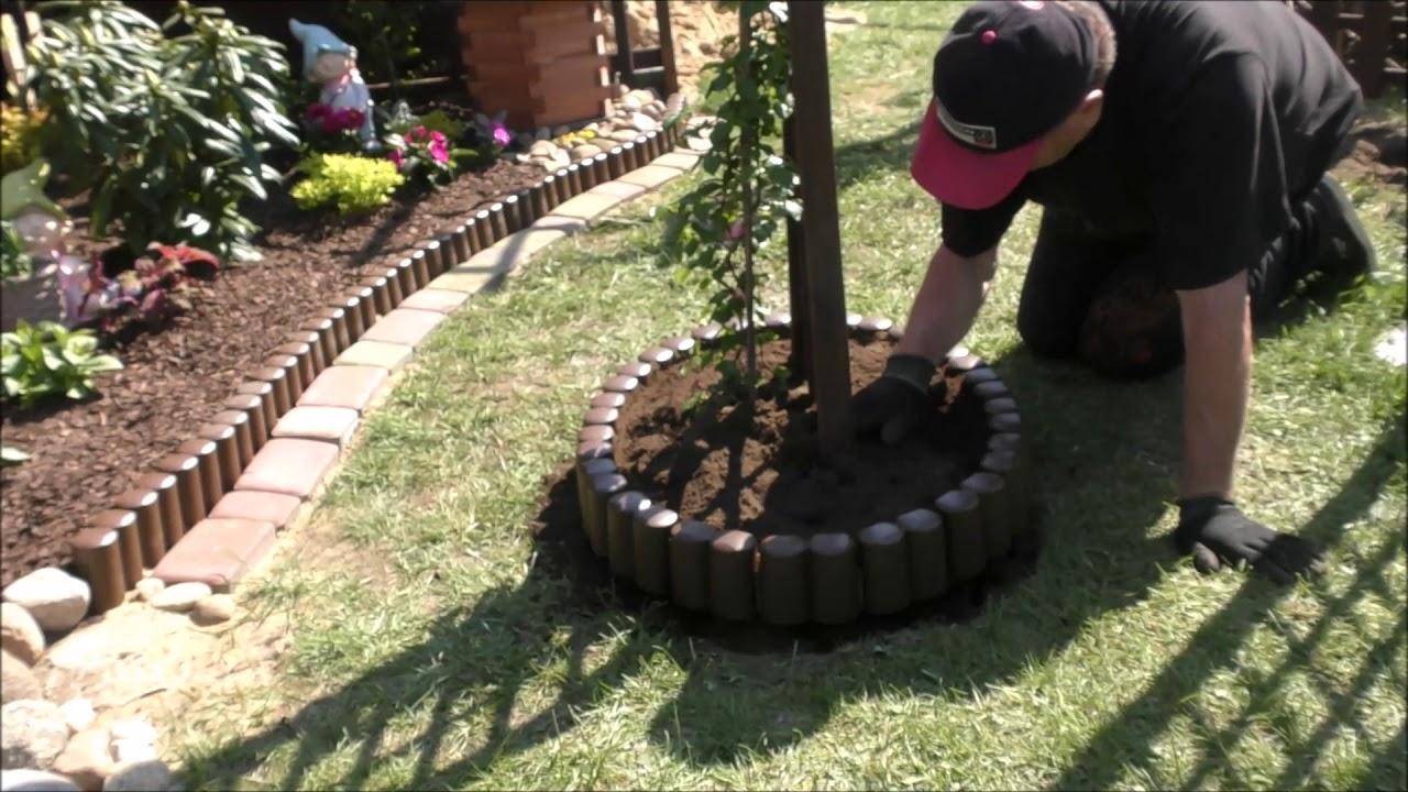 Garden 2 Pergolowe Kwietniki Jak Posadzić Hortensję Pnącą