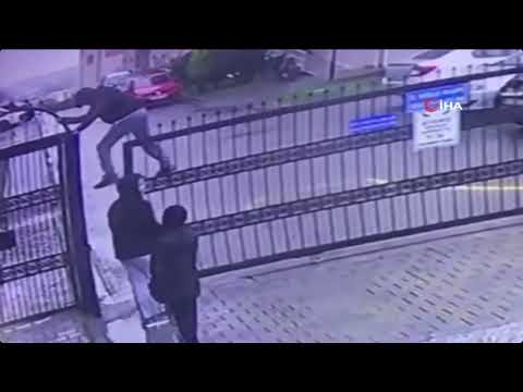 Funny intruder gets pants torn apart while sneaking over fence