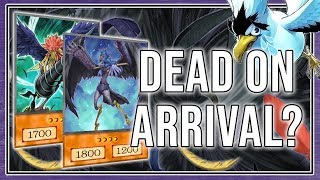 Blackwings FAILED?! NEW Deck Review + DUELS! My Birds!  [Yu-Gi-Oh! Duel Links]