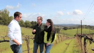 Expedia Road Trip: California Wine Country