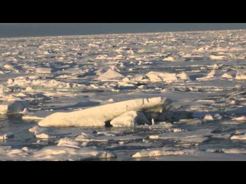 University of Alaska Arctic Research is Making a Difference