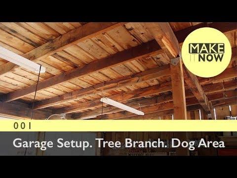 001 - Garage Setup. Tree Branch. Dog Area
