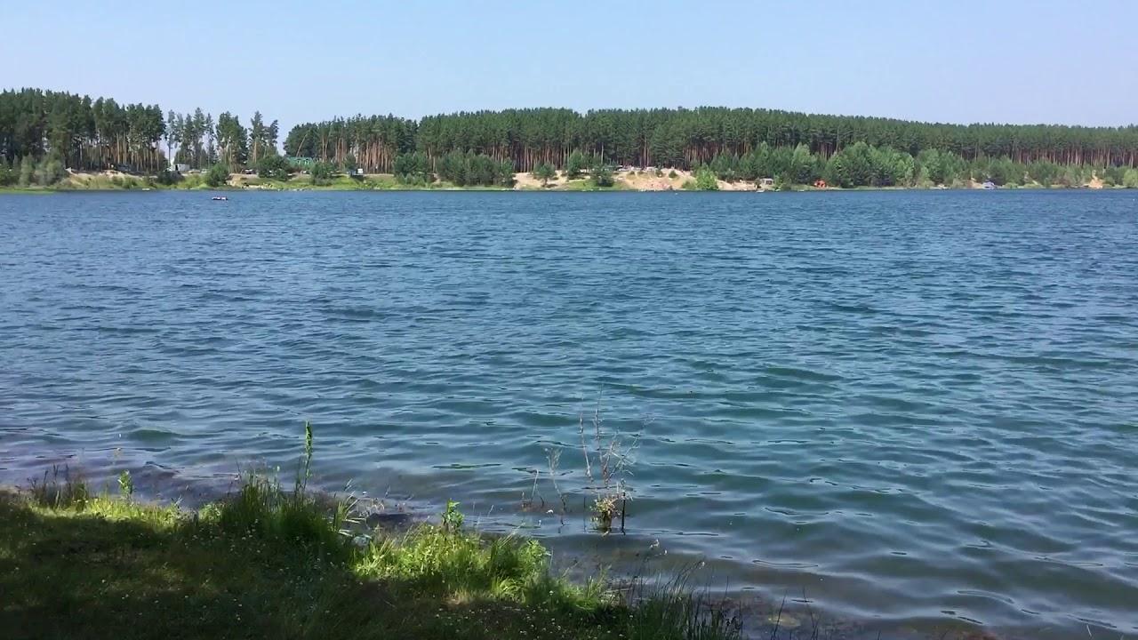 лебединка томская область озеро фото