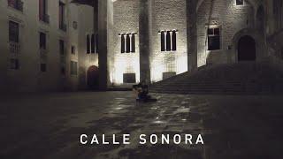 Calle Sonora | Sergi Boal - Nuvol / Ice voice