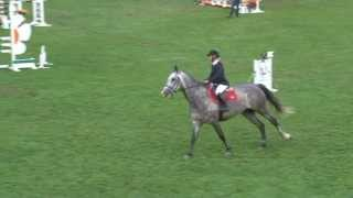 CSO, Sanctus de Pascre SF Fontainebleau CL 6 ans Petite finale 2012. Horse by Mr Blue.