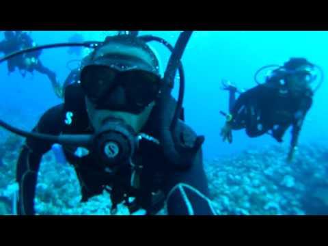 Scuba Diving Adventures: Mo'orea French Polynesia Part 2