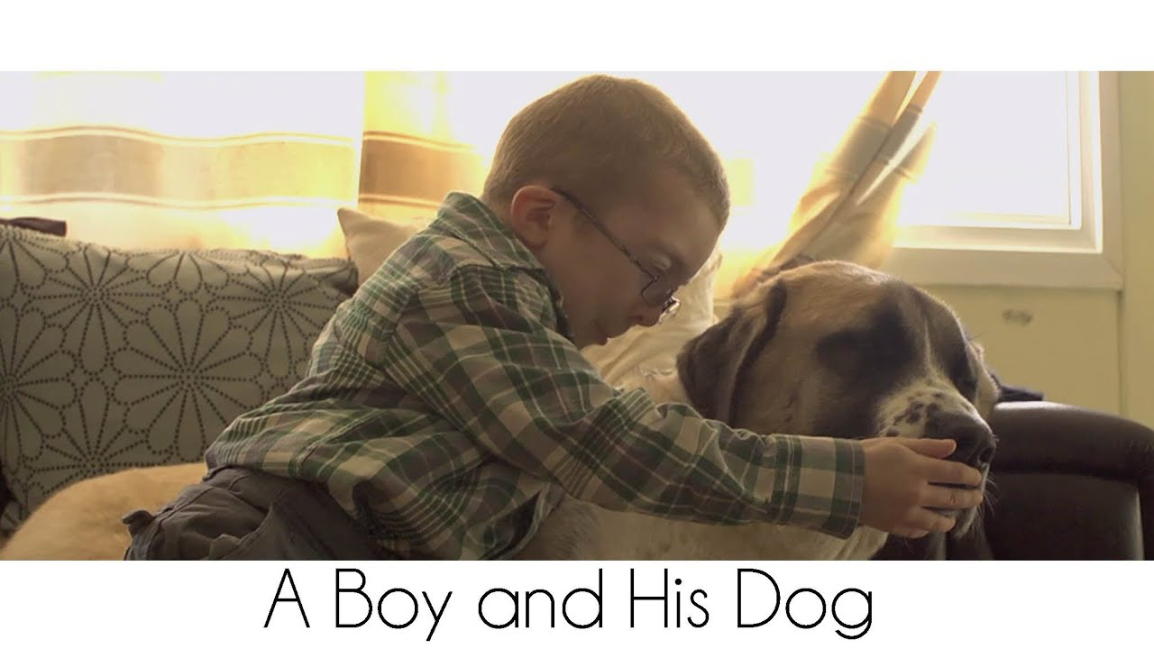 A Boy And His Dog YouTube - One boy dog heart warming