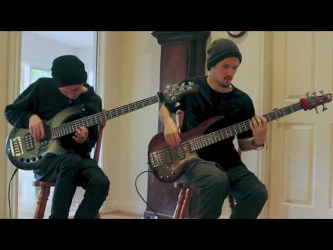 The Omnific - The Woven Web (Animals as Leaders Cover)