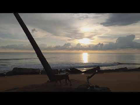 # Update Bang Niang Beach,, Khao-Lak Phang-nga.