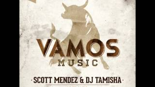 Scott Mendez, Dj Tamisha - Vazilando (Soul Cartel Remix) Preview