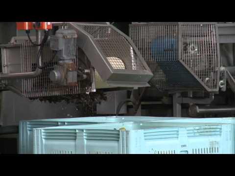 AFGC Shepparton Factory Tour 2012