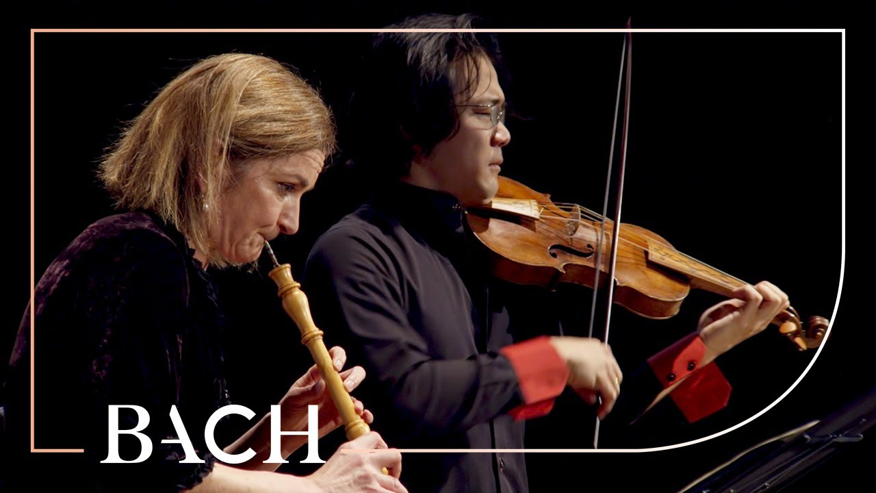 Bach - Concerto for Oboe and Violin in C Minor BWV 1060r - Black and Sato | Netherlands Bach Society