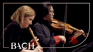 Bach  Concerto for Oboe and Violin in C Minor BWV 1060r  Black and Sato | Netherlands Bach Society