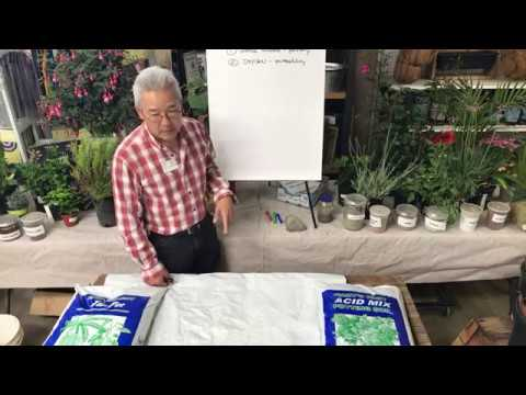 WHAT IS PERFECT SOIL? INSTALLING PLANTS PROPERLY | LIVESTREAM