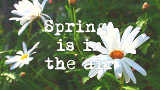 Spring is in the air. Part 2 [Lofi / Chill hop / Instrumental / Jazzhop]