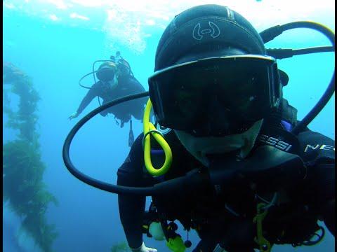 UCSB scuba divers @ Catalina Island