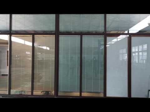 Motorized Blinds in glass