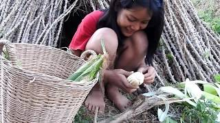 Primitive my lifestyle-Beautiful girl pick to cooking corn for food-Eating delicious corn