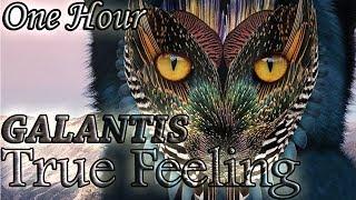 Video Galantis - True Feeling (One Hour LOOP) download MP3, 3GP, MP4, WEBM, AVI, FLV September 2018