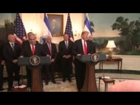 Trump offers Gaza condolences to Netanyahu