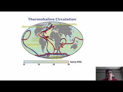 Oceans 2a. Thermohaline circulation