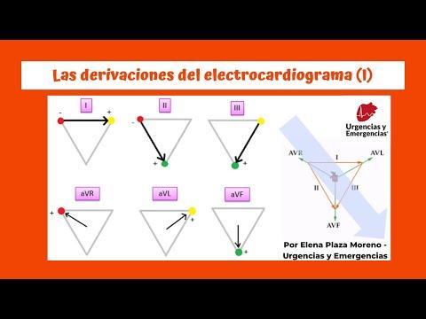 Las Derivaciones Del EKG (I)