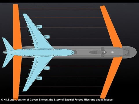 Russia Planning Submarine With Huge 'Wings'; Another Is World's Largest