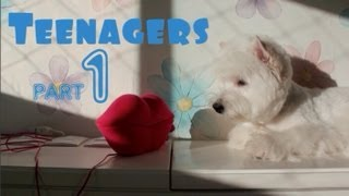 Oliver The Westie - Teenagers (part 1)