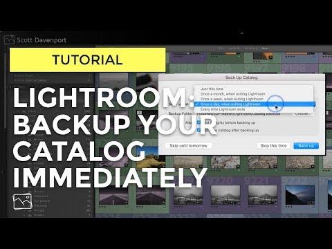 Lightroom Tutorial - Backup Your Catalog Immediately