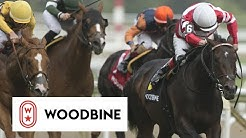 2019 Connaught Cup (Grade II): Woodbine, June 1, 2019 - Race 8
