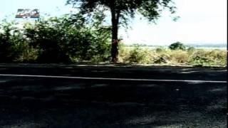Aveau 180 km 5 tineri s au izbit violent cu masina intr un copac, langa Bulboaca  SOFERITA a murit