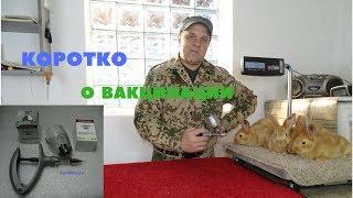Вакцинация кроликов ВГБК, Миксоматоз, Пастереллёз в кролиководческом хозяйстве