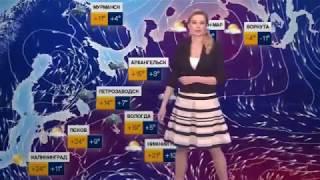 Погода сегодня, завтра, видео прогноз погоды на 3 дня 19.5.2017