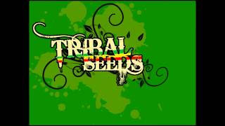 Watch Tribal Seeds Jah Stone video