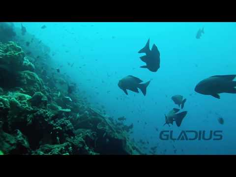 Gladius Submersible Underwater Drone In Bali