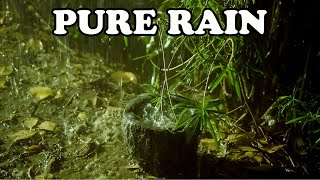 Pure Heavy Rain in Garden with Deep Thunder Sounds - Real Rain Sounds for Sleeping, Relaxing, Read