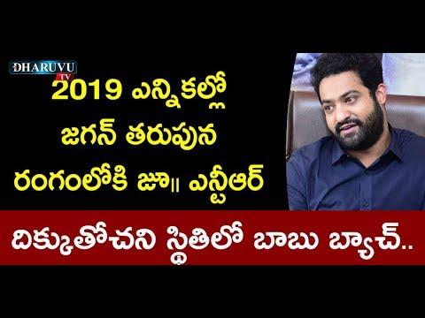 2019 ఎన్నికల్లో జగన్ తరుపున రంగంలోకి జూ॥ ఎన్టీఆర్ | Dharuvu TV