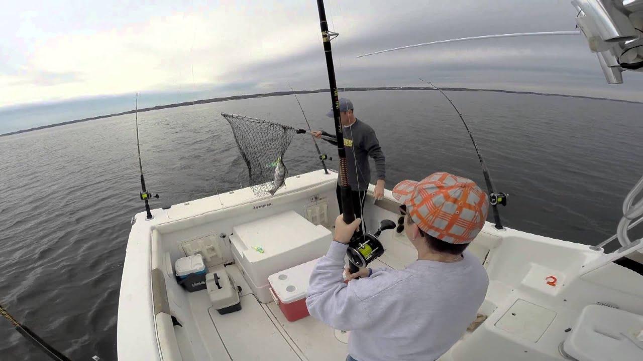 November Striper Fishing Chesapeake Beach Md