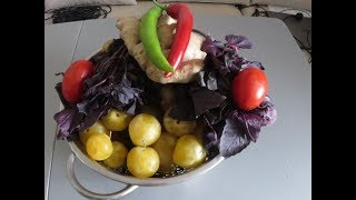 АДЖИКА из слив! И снова заготовки на зиму! Пряно-кислый соус с помидорами!