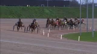 Vidéo de la course PMU PRIX BOLD EAGLE