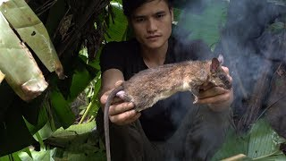 Survival in the tropical rainforest, ep 20, ideal shelter