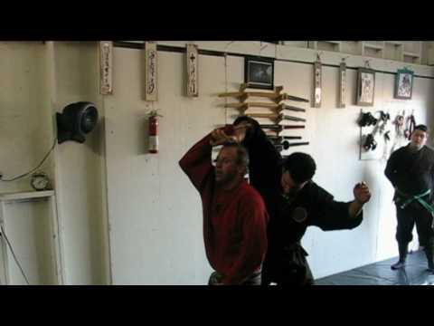 Bujinkan Ninja Training Online Dojo - Togakure Ryu Ninpo Taijutsu - Andrew Young