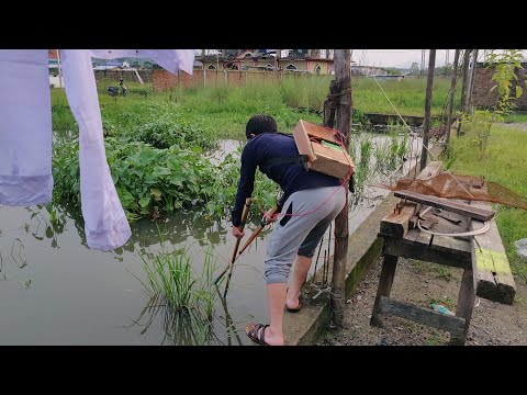 ELECTRIC FISHING IN NORTHEAST INDIA    ELECTRIC SHOCK FISHING    HoMe Of AweSoMe ViDeOs!