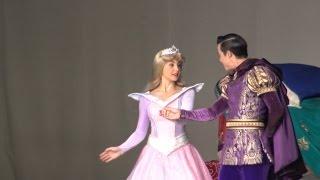 TDL 素敵なオーロラ「 ディズニープリンセス in ワンマンズⅡ」Beautiful  Princess Aurora 'Disney Princess in One Man's Dream II'