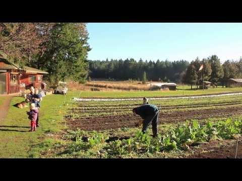 Certified Organic Farm at Nanoose Edibles Farm