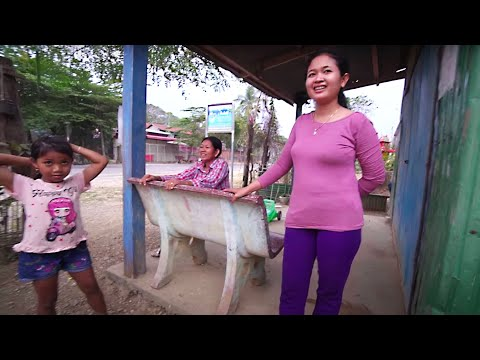 LIFE in a CAMBODIAN VILLAGE - Tour of a Rural Farm